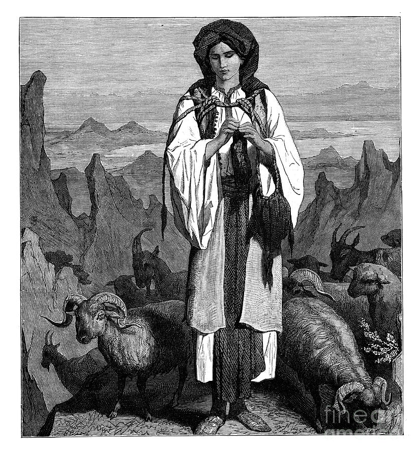 Albanian Shepherdess, C1890 Drawing by Print Collector