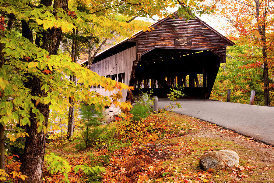 Albany Covered Bridge Near Conway, New Photograph by Danita Delimont