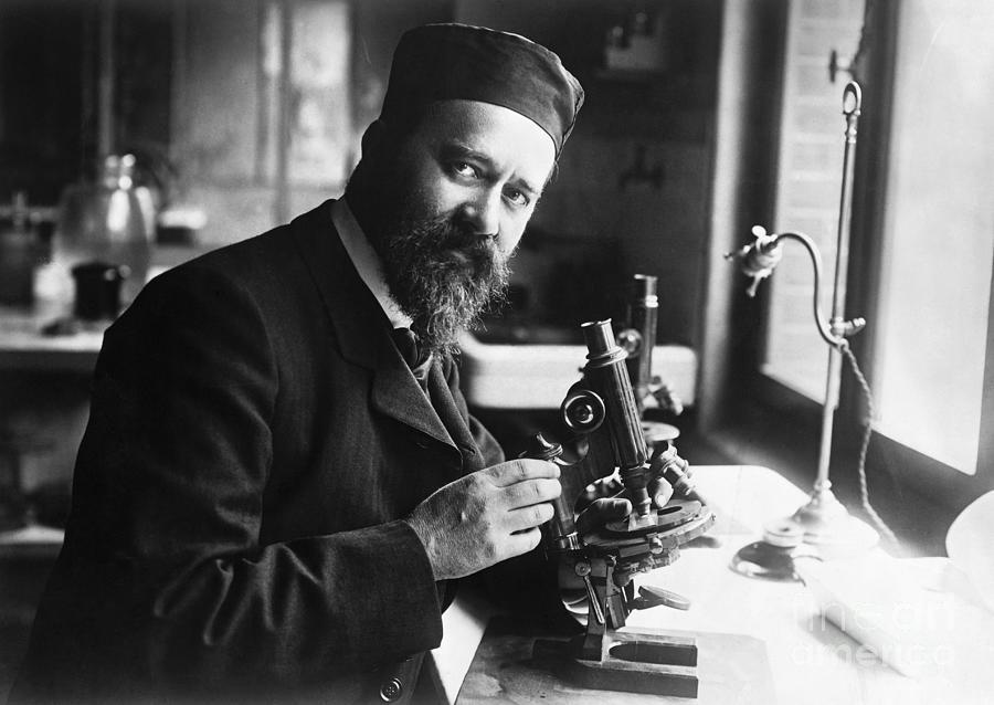 Albert Calmette Working With Microscope Photograph by Bettmann