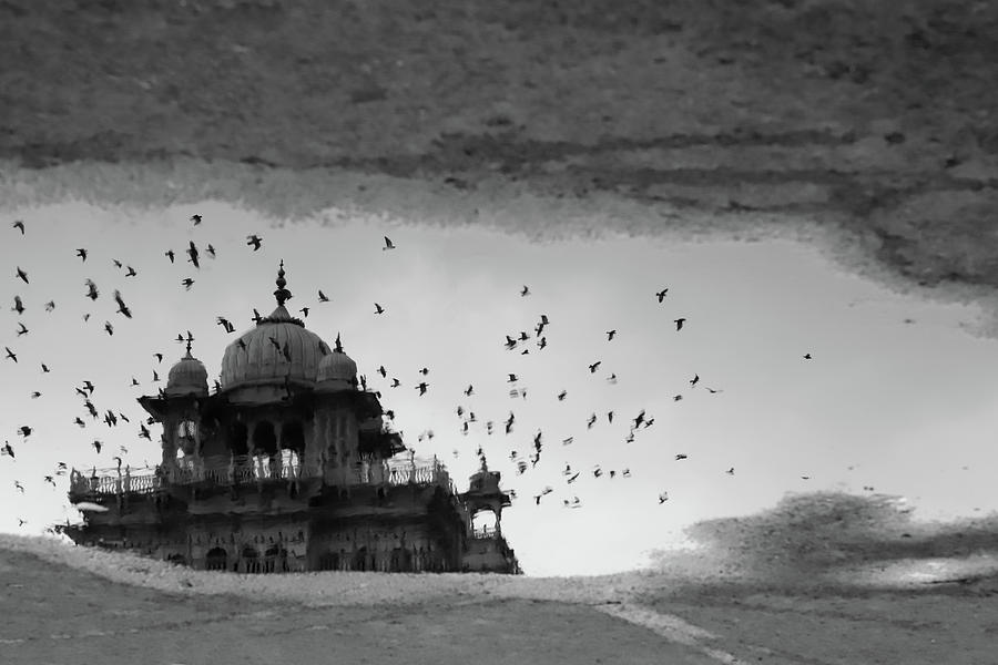 Albert Hall Museum Reflection  by Prakash Ghai