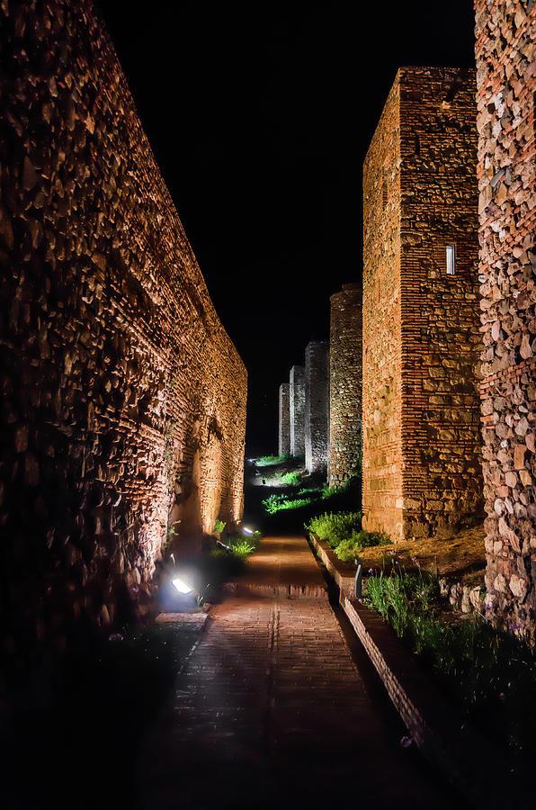 Alcazaba Photograph - Alcazaba II by Borja Robles