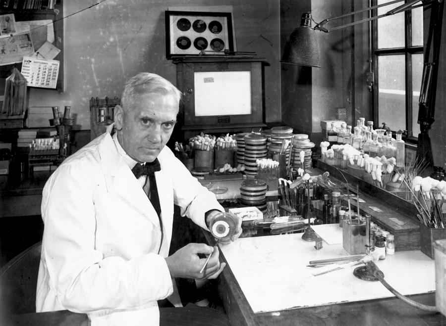 Alexander Fleming Photograph by Davies