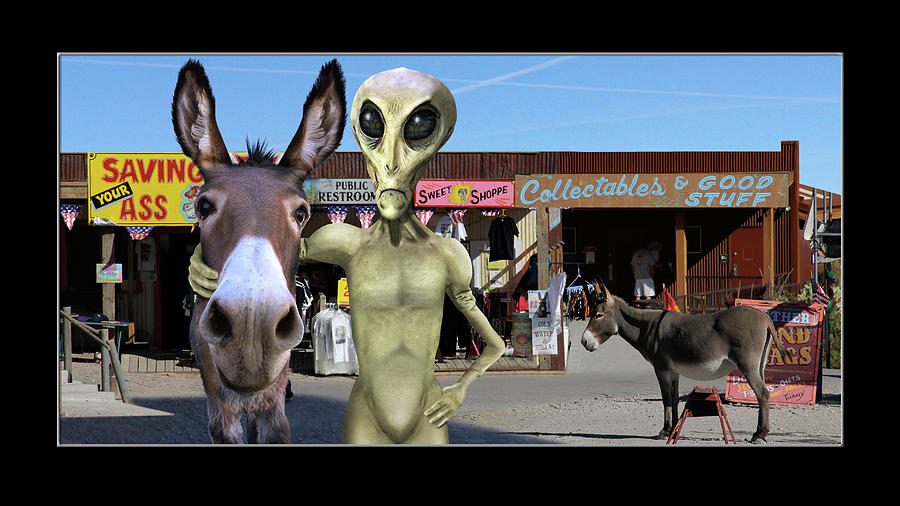 Alien Vacation - Oatman Arizona by Mike McGlothlen