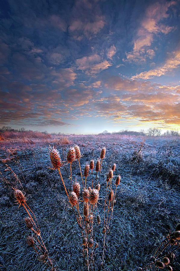 Weather Photograph - All That You Need Is In Your Soul by Phil Koch