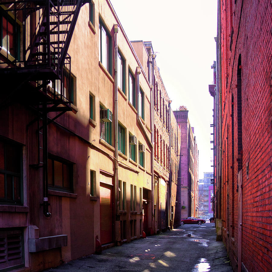 Alley in Seattle by David Patterson