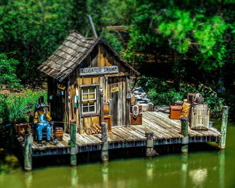 Alligator Swamp by Rodney Lee Williams