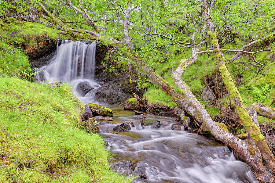 Allt Leathan Waterfall below Schiehallion - Scotland - Perthshire by Jason Politte