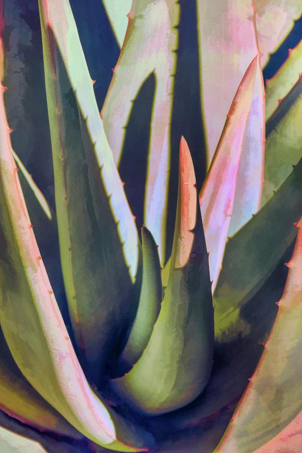 Aloe Abstraction by Leda Robertson