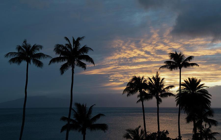 Aloha and Goodbye by Gaylon Yancy