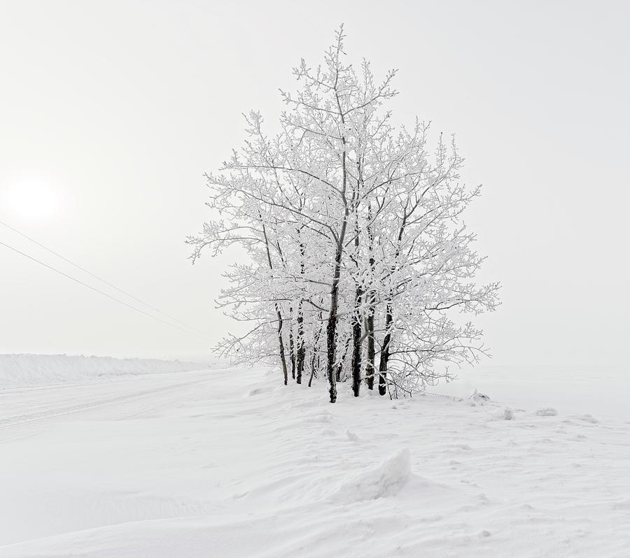 Alone on the Prairie by Dan Jurak