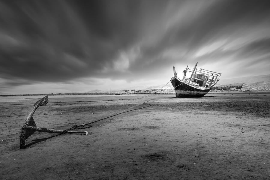 Dubai Photograph - Alone by Shahram Jahansooz