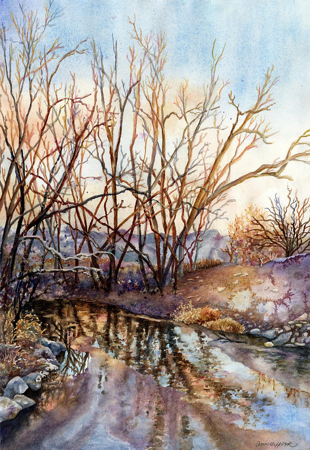 Along Boulder Creek by Anne Gifford