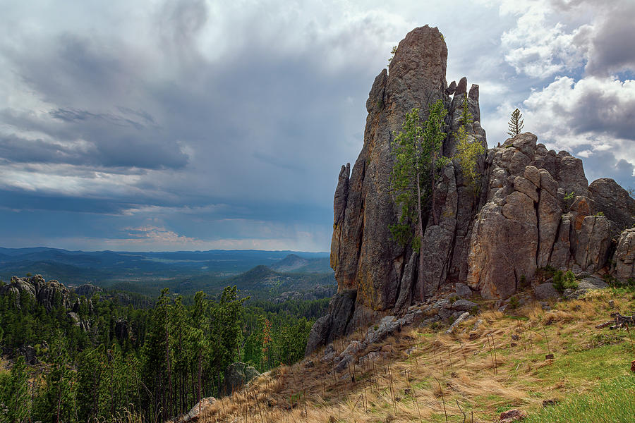 Along Needles Highway Custer State Park South Dakota by Joan Carroll