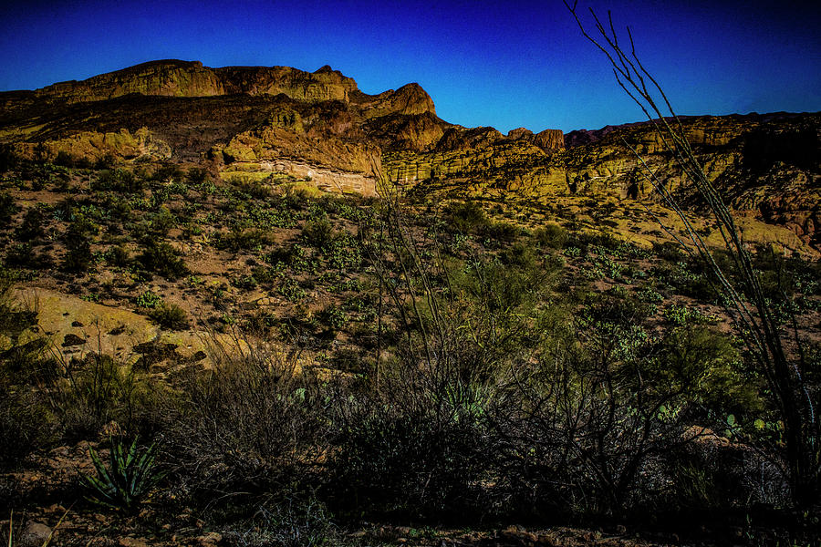 Along the Apache Trail by Roger Passman