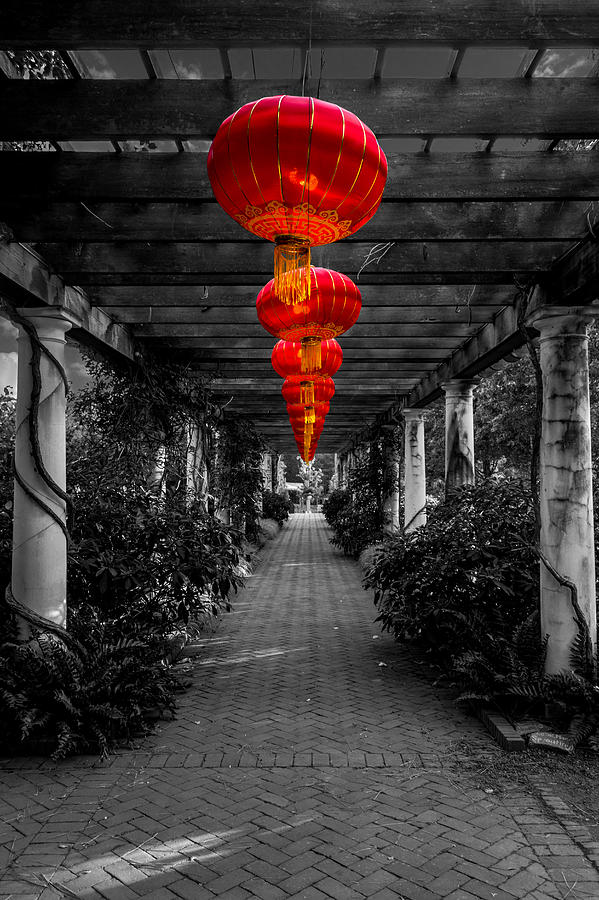 Red Photograph - Along The Red Path by Christine Buckley