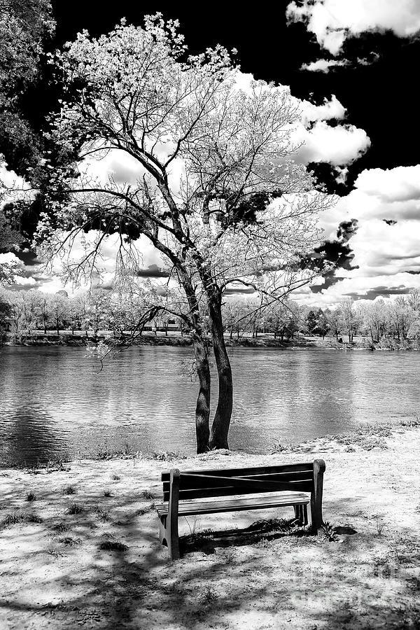 Washington Crossing Photograph - Along The River At Washington Crossing In New Jersey by John Rizzuto