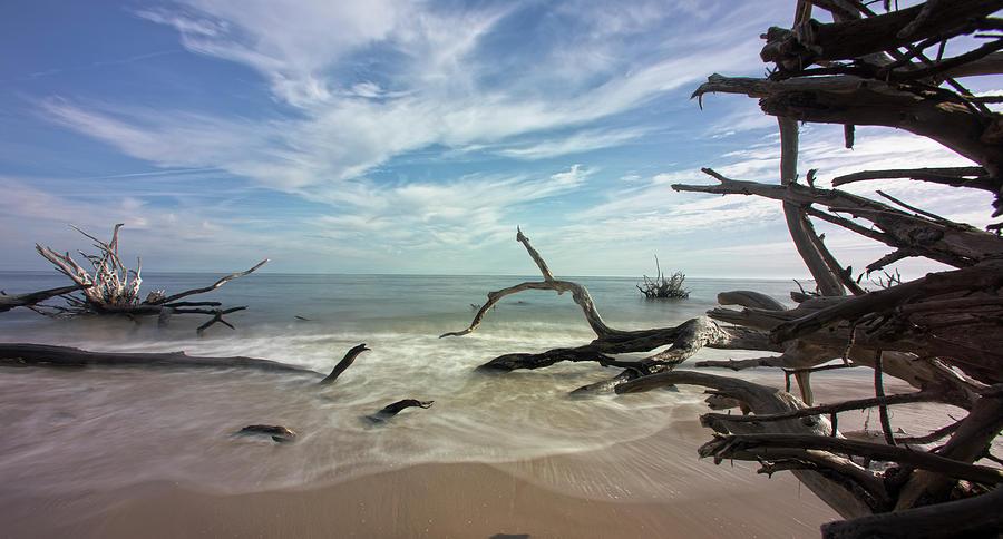 Along the Sand by Robert Och