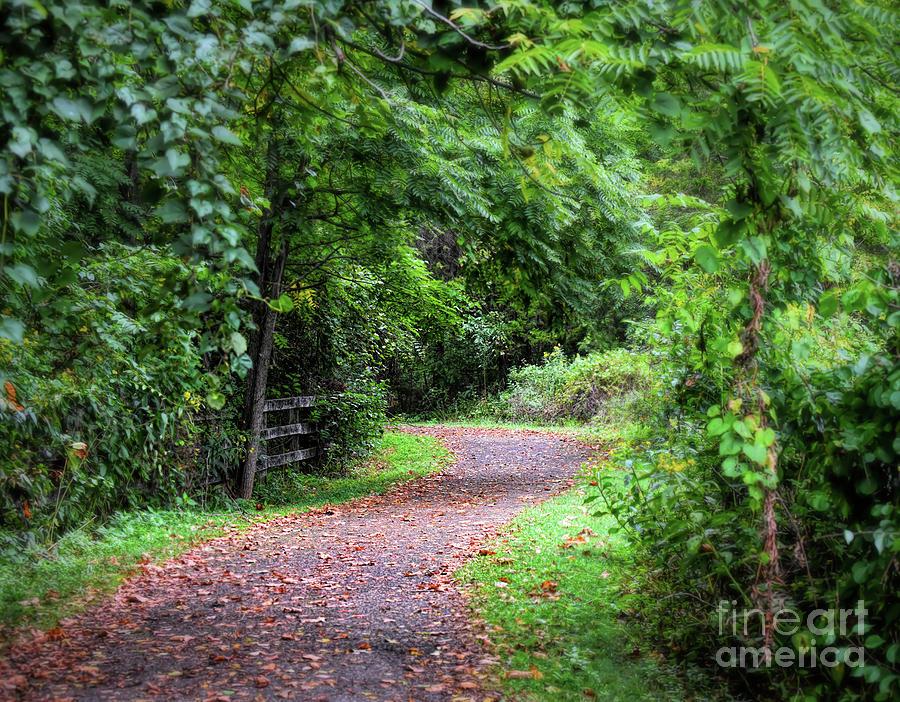 Along the Trail  by Kerri Farley
