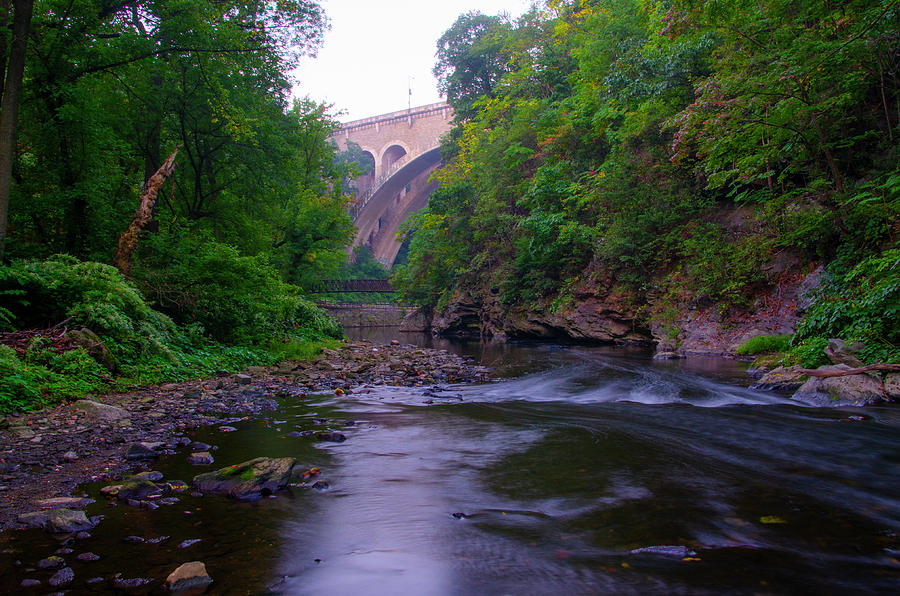 Along Photograph - Along The Wissahickon At The Henry Avenue Bridge by Bill Cannon
