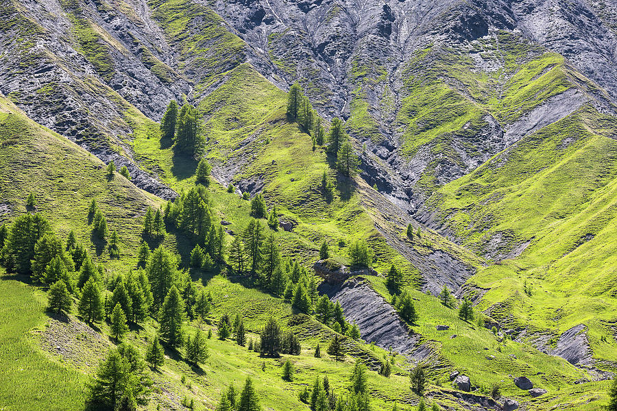 Alpes de Haute-Provence - 4 - French Alps by Paul MAURICE
