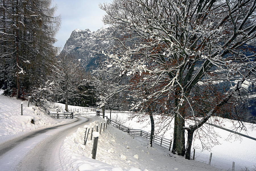 Alps Photograph - Alpine Road in Winter by Two Small Potatoes