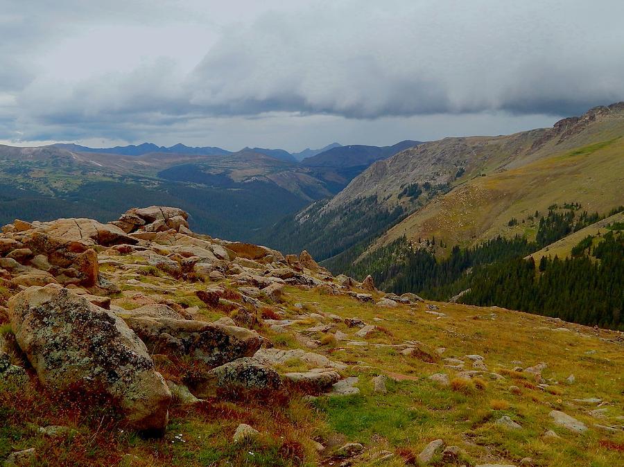 Alpine Tundra by Dan Miller
