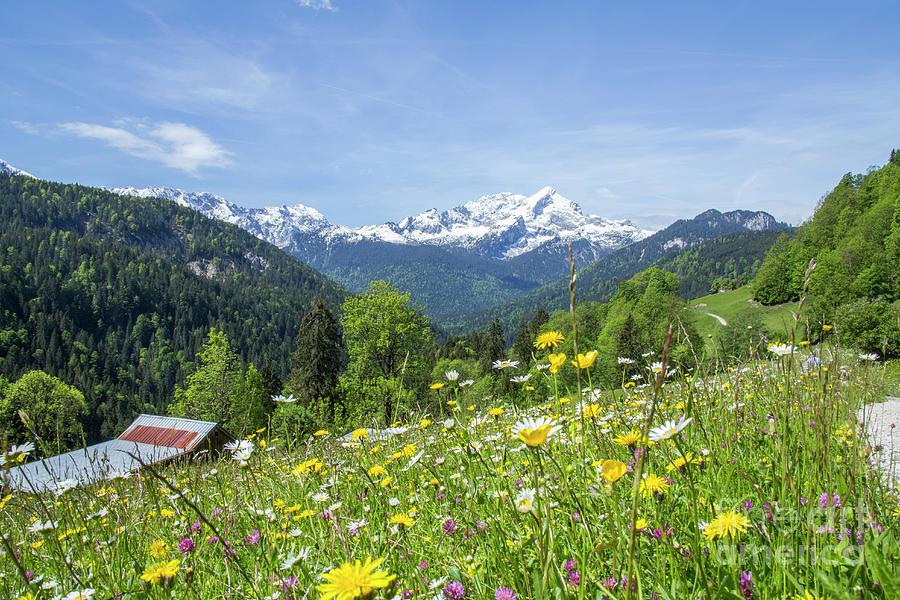 Alpspitze in Spring by Fabian Roessler