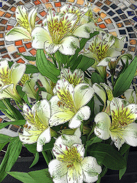 Alstroemeria Bouquet 6001 by Corinne Carroll