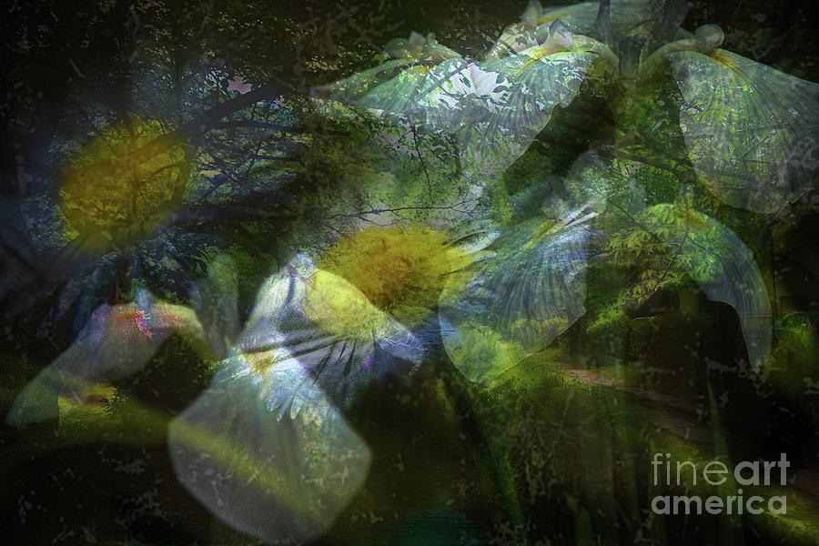 Altered state of consciousness at the Island by Fine art photographer JULIE