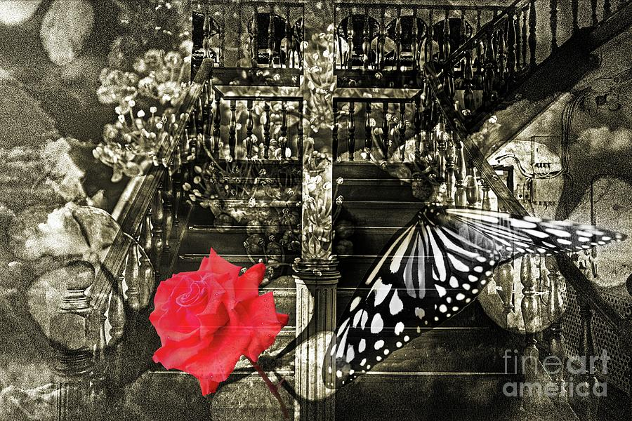 Altered state of consciousness Stairway to the heavens by Fine art photographer JULIE