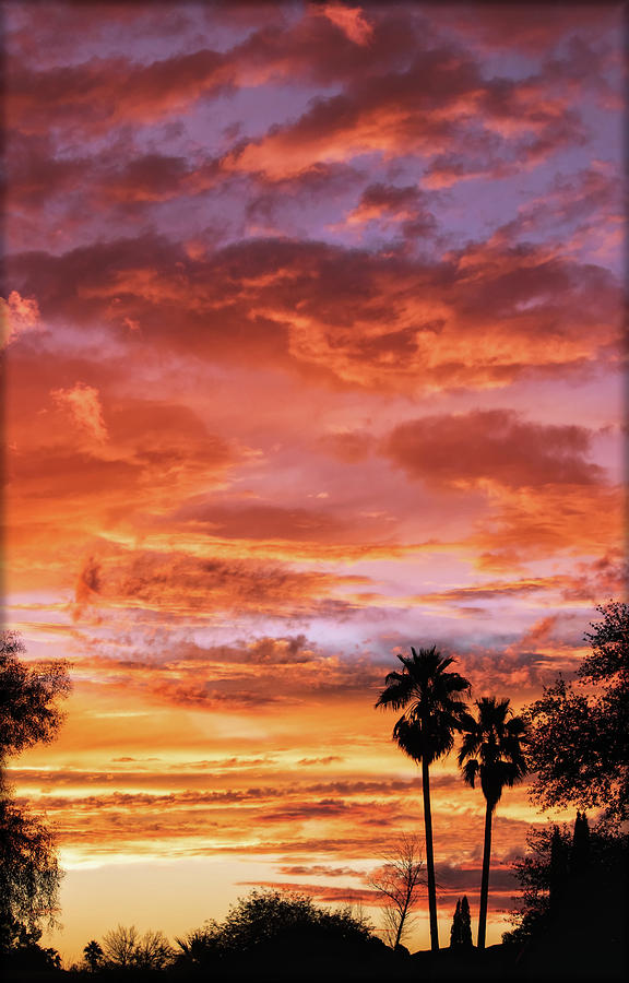 Amazing Arizona Sunsets by ELAINE MALOTT