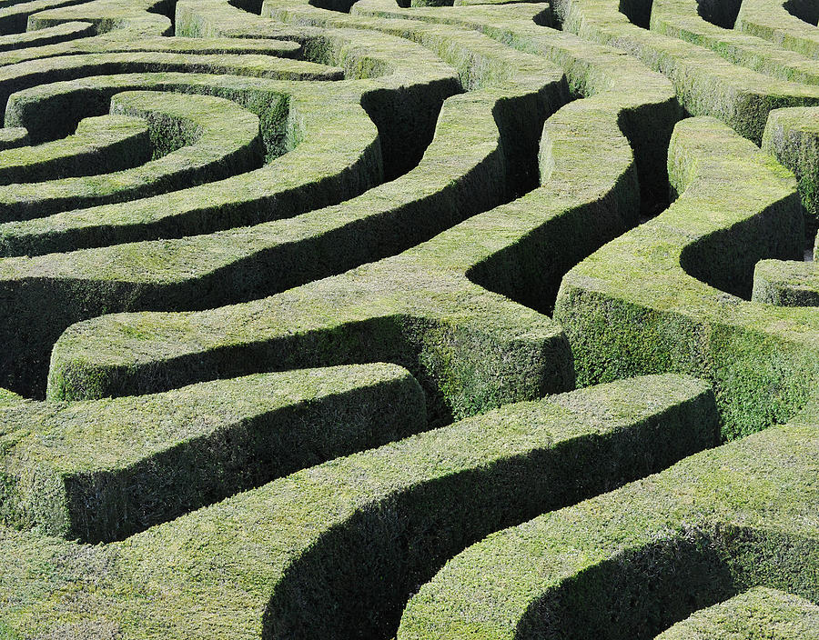 Amazing Maze Photograph by Oversnap
