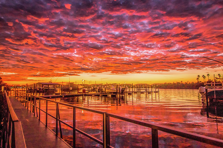 Amazing Sunrise by Dorothy Cunningham