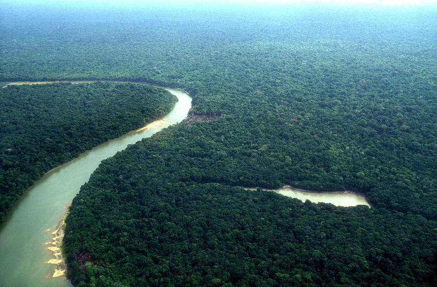 Amazon Planet Photograph by Am29