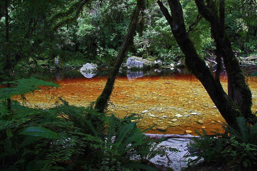 Amber Mountain Stream by Nareeta Martin