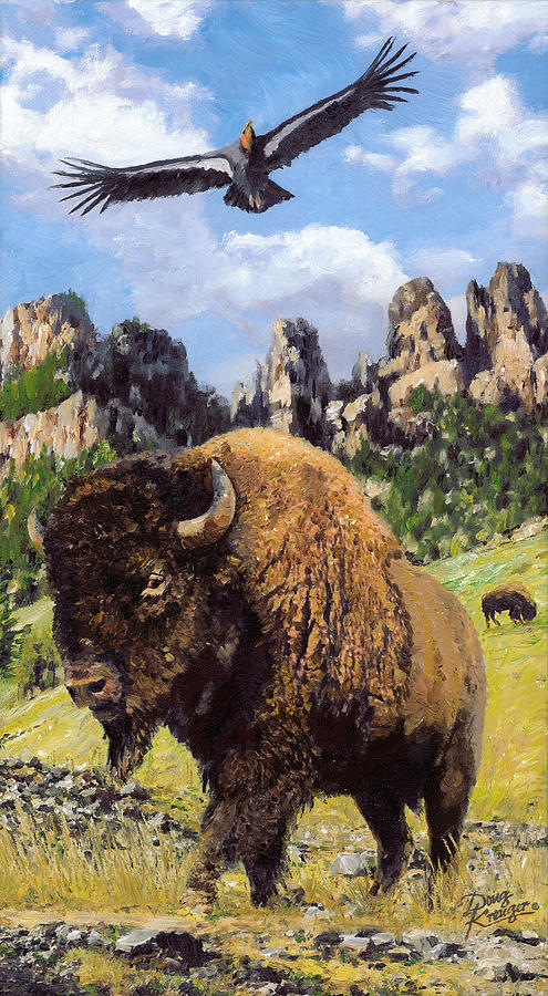 American Bison by Doug Kreuger