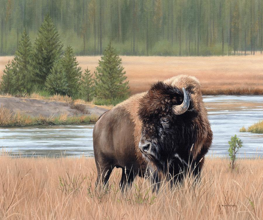 American Bison by Rachel Stribbling