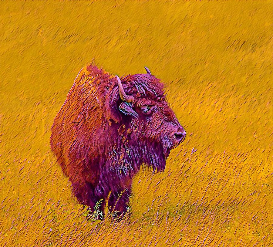 American Buffalo by Susan Rydberg