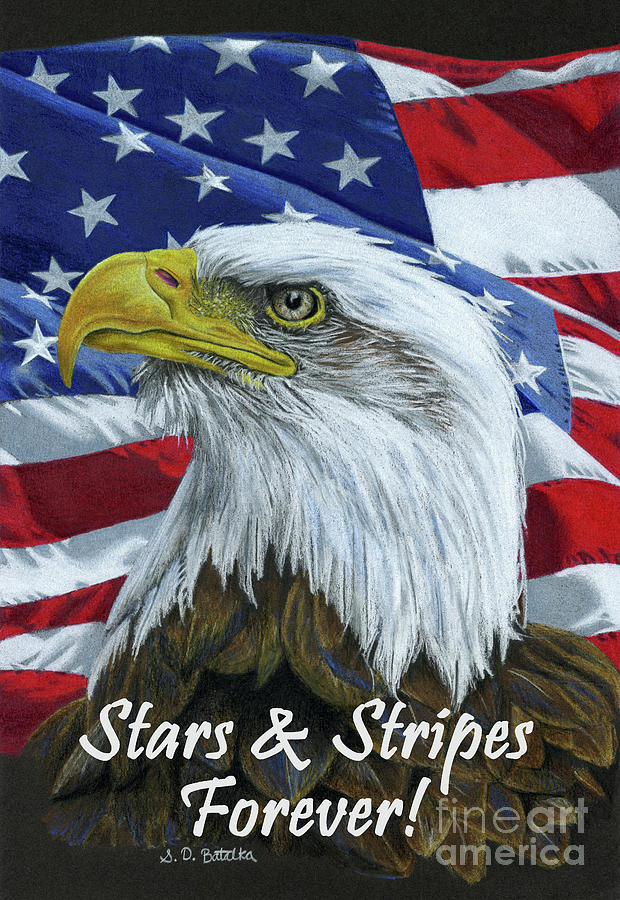 American Eagle Drawing - American Eagle- Stars And Stripes Forever by Sarah Batalka