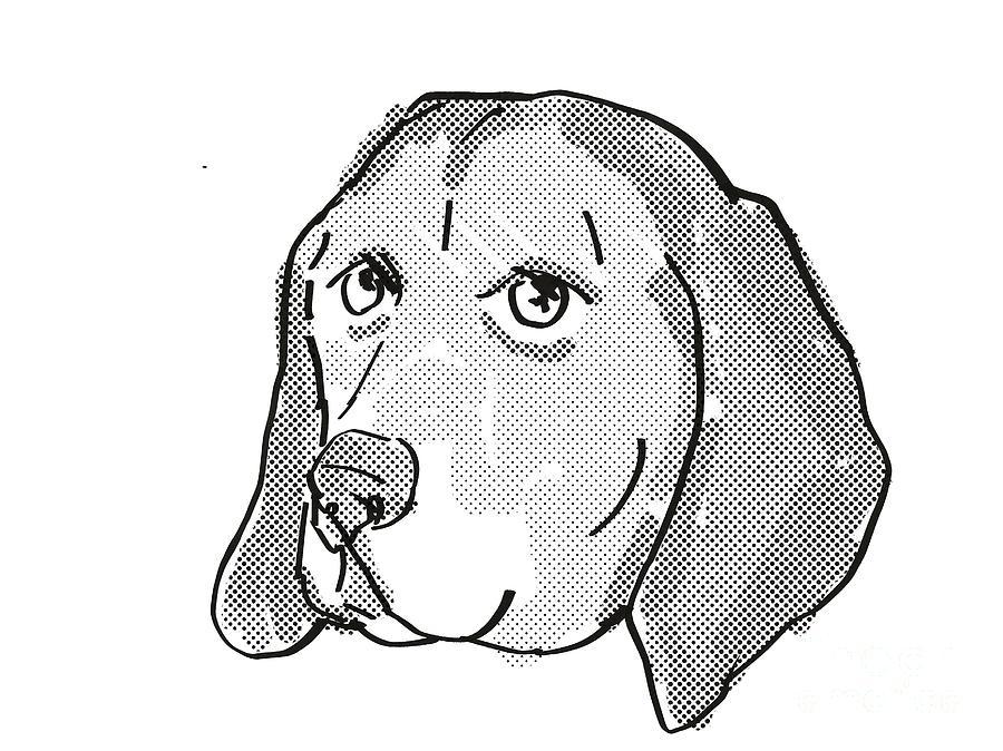 Retro Digital Art - American English Coonhound Dog Breed Cartoon Retro Drawing by Aloysius Patrimonio