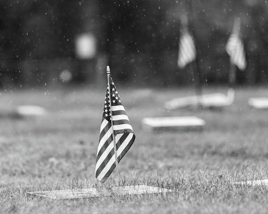 American Flag on Veteran Graves by Amelia Pearn