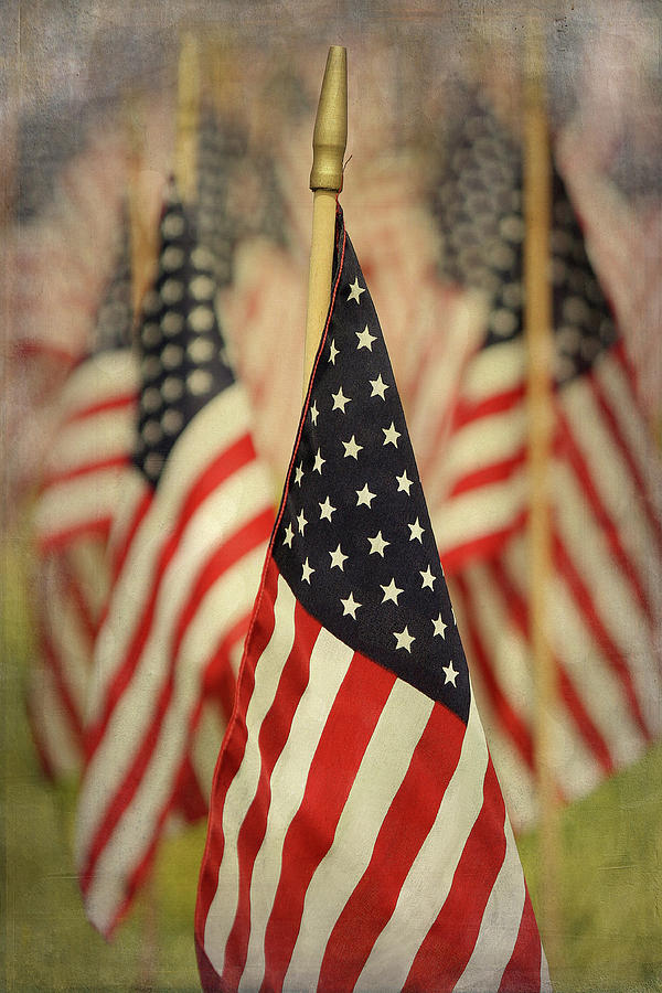 American Flags Photograph by Cgander Photography