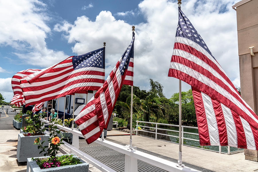 American Flags Flying in the Wind by Brian Johnson