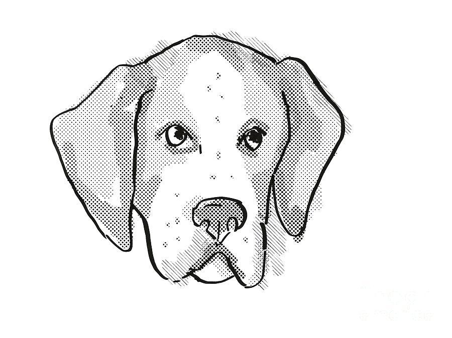 Retro Digital Art - American Foxhound Dog Breed Cartoon Retro Drawing by Aloysius Patrimonio