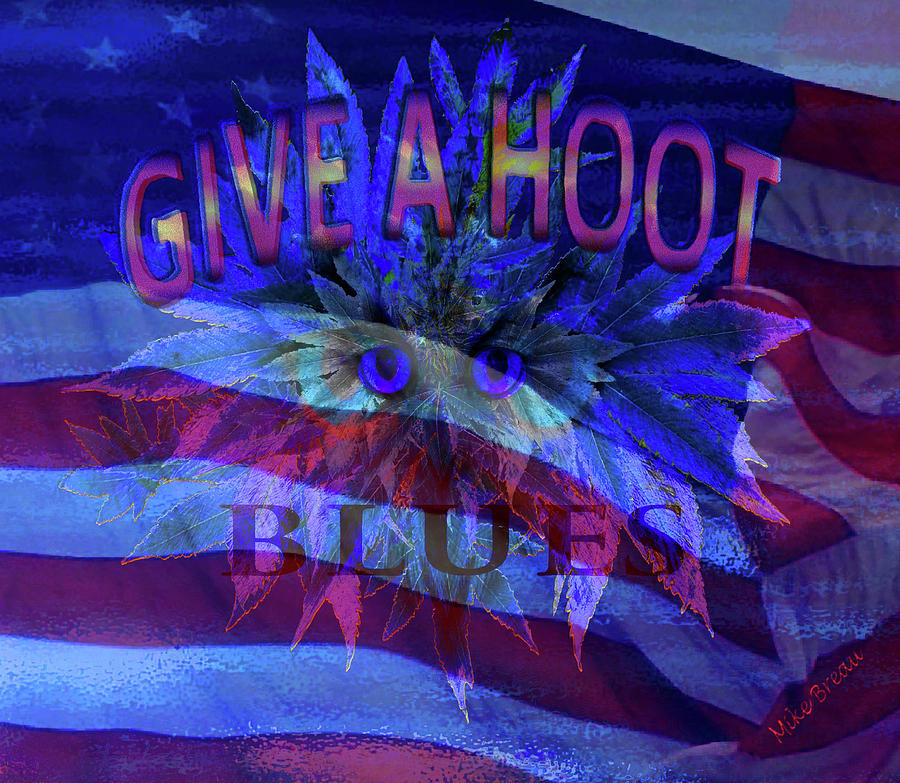 American Give A Hoot Blues Mixed Media