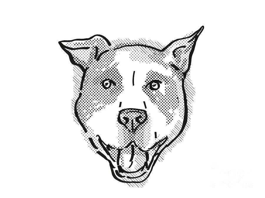 Retro Digital Art - American Pit Bull Terrier Dog Breed Cartoon Retro Drawing by Aloysius Patrimonio