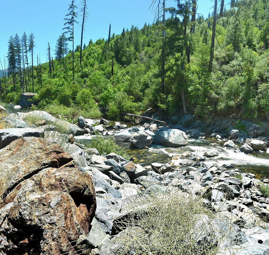 American River Rocks by Joe Lach
