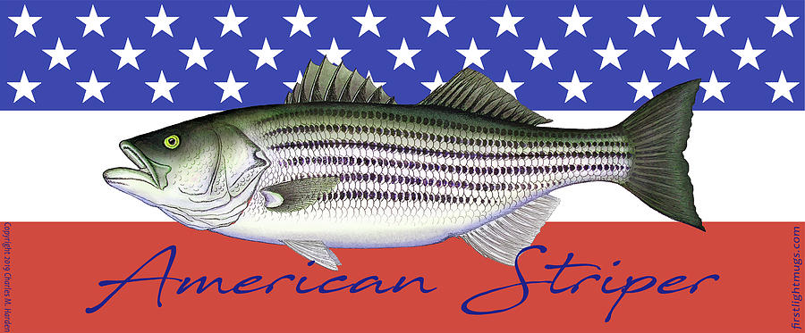 American Striper Striped Bass Flag by Charles Harden