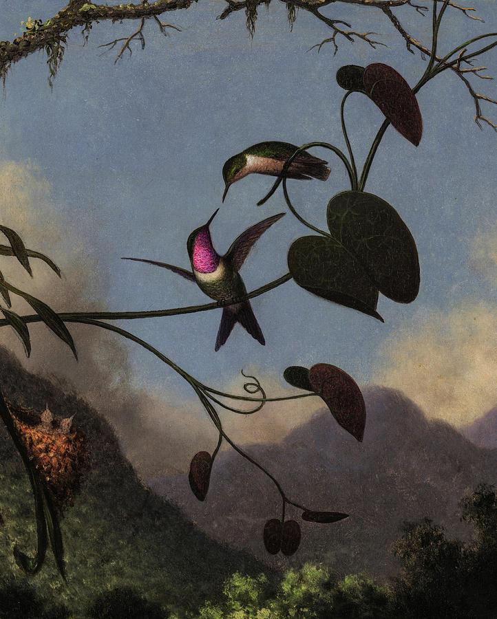 Martin Johnson Heade Painting - Amethyst Woodstar, 1863 by Martin Johnson Heade