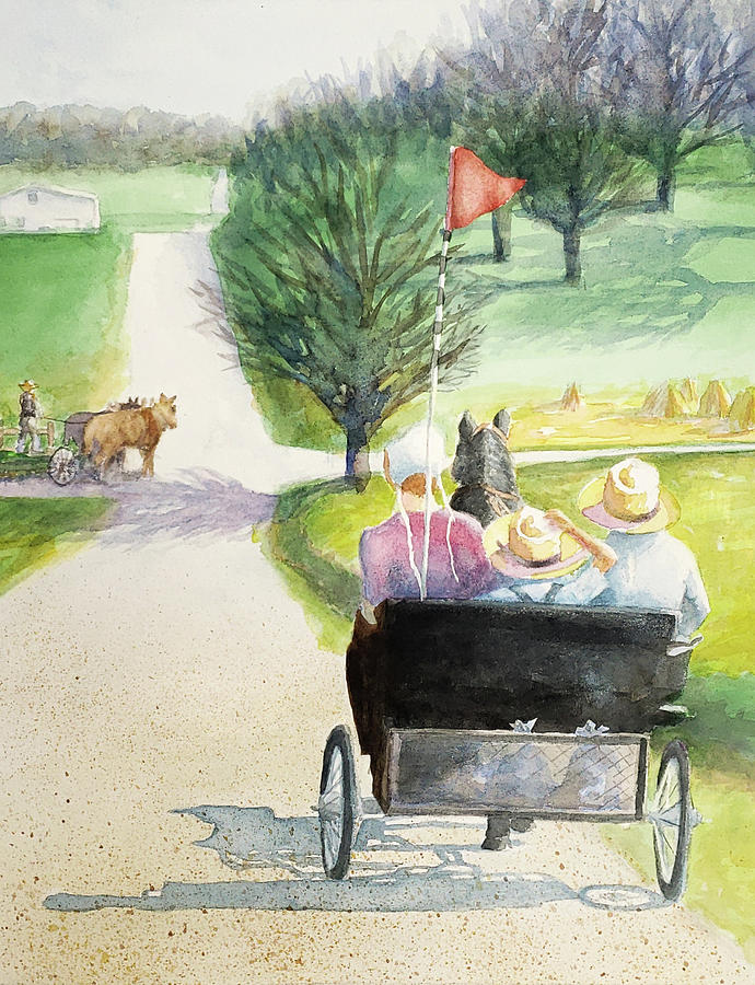 Amish Buggy Ride by George Harth